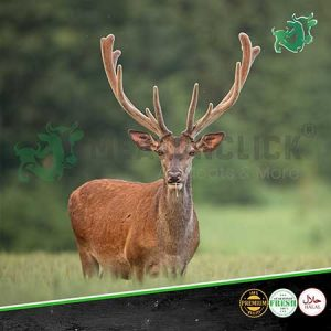 deer meat meatonclick